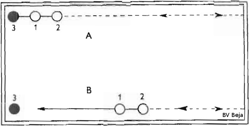 Figuur 41